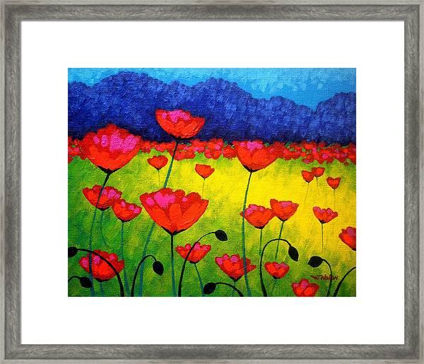 Poppy Cluster Framed Print
