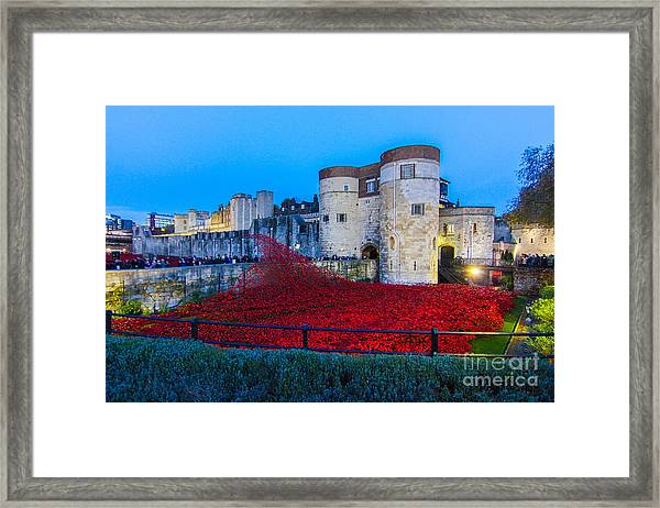 Poppy Flowers Tower Of London Framed Print