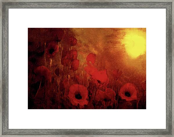 Poppy Heaven Framed Print