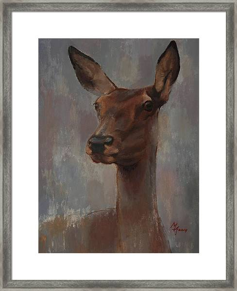 Portrait Of A Young Doe Framed Print