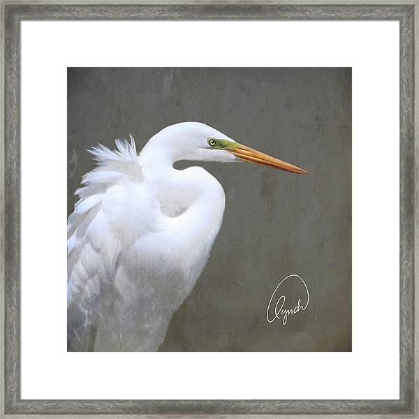 Portrait Of An Egret Signed Framed Print