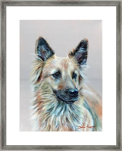 Portrait Of Sasha Framed Print
