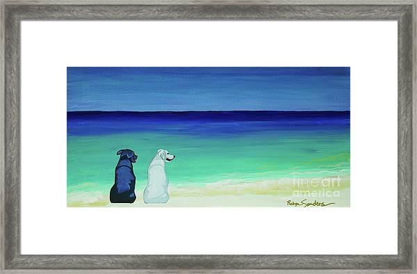 Lab Potcake Dogs On The Beach Framed Print