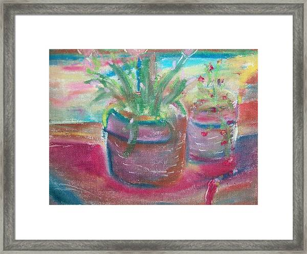 Potted Plants Framed Print by Bob Smith