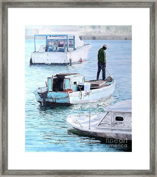 Potter's Cay Blues Framed Print