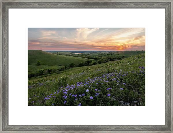 Prairie In Bloom Framed Print