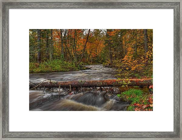 Prairie River Tree Crossing Framed Print