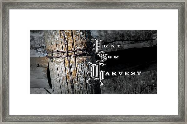 Pray Sow Harvest Framed Print