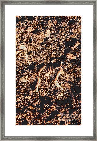 Prehistoric Diplodocus Bones Framed Print