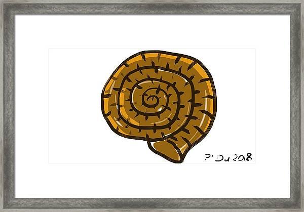 Prehistoric Shell Framed Print