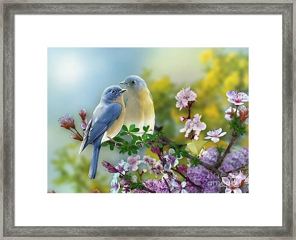 Pretty Blue Birds Framed Print
