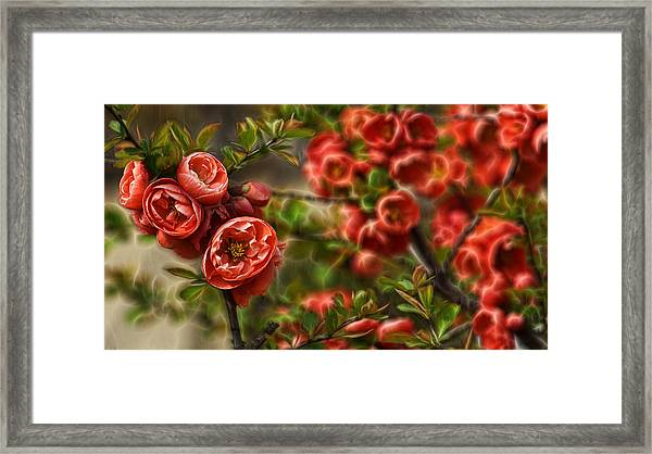 Pretty In Red Framed Print