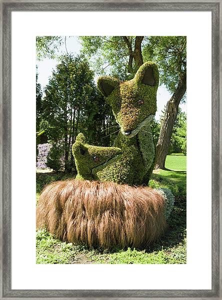 Prince Edward Island's Entry The Red Fox Framed Print