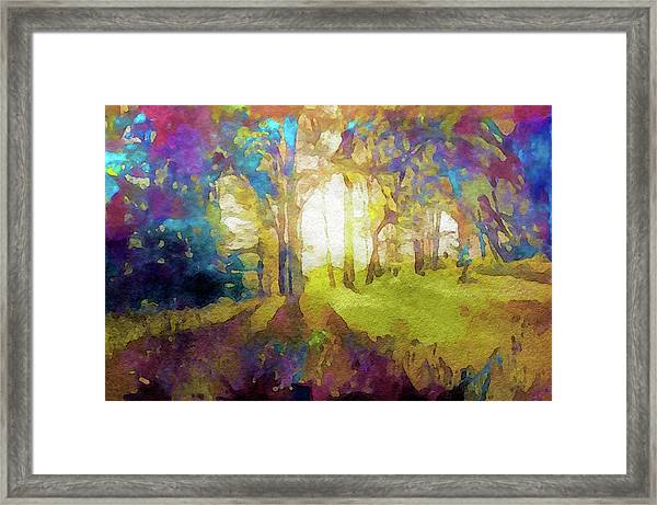 Prismatic Forest Framed Print
