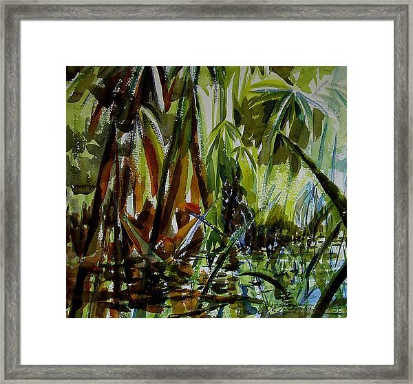 Pristine Waters Framed Print