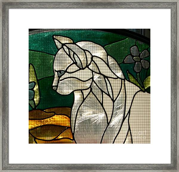 Profile Of A Cat Framed Print