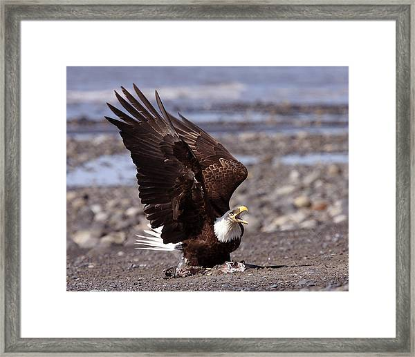 Protecting The Catch Framed Print