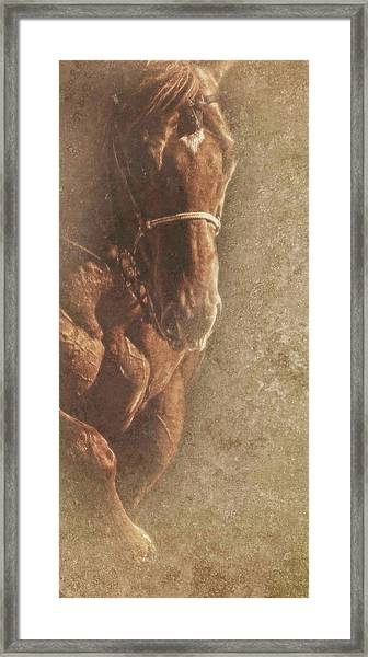 Prowess And Power Framed Print