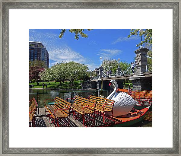 Public Garden Swan Boat In The Spring Boston Ma Framed Print