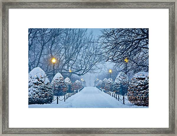 Framed Print featuring the photograph Public Garden Walk by Susan Cole Kelly