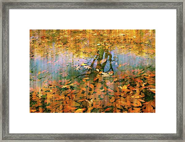 Puddle Play Framed Print