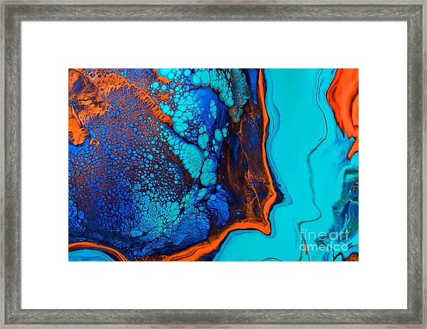Puffer Fish Framed Print