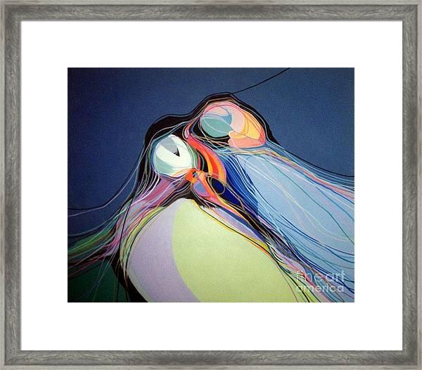 Puffins Framed Print
