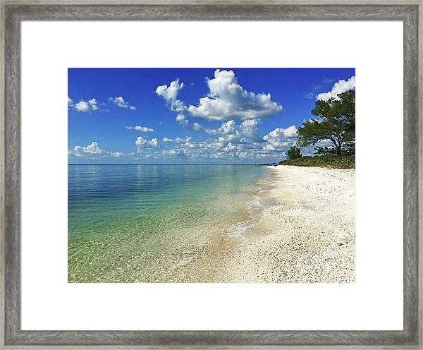 Puffy White Clouds At Delnor-wiggins Framed Print