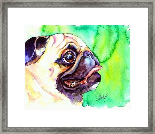 Pug Profile Framed Print