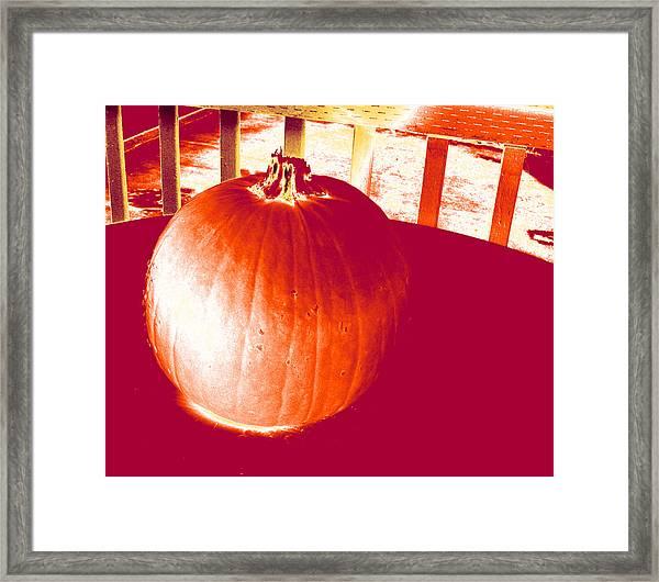 Pumpkin #1 Framed Print