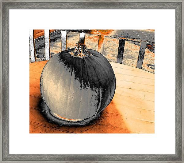 Pumpkin #2 Framed Print