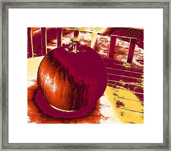 Pumpkin #5 Framed Print