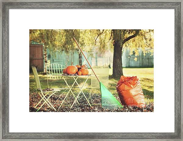 Pumpkins On The Table Framed Print