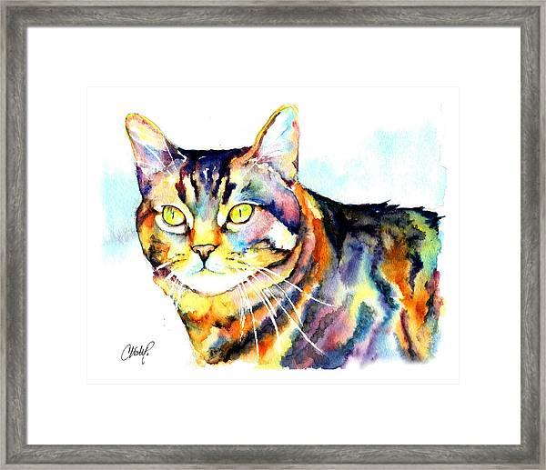 Punky Kitty  Framed Print