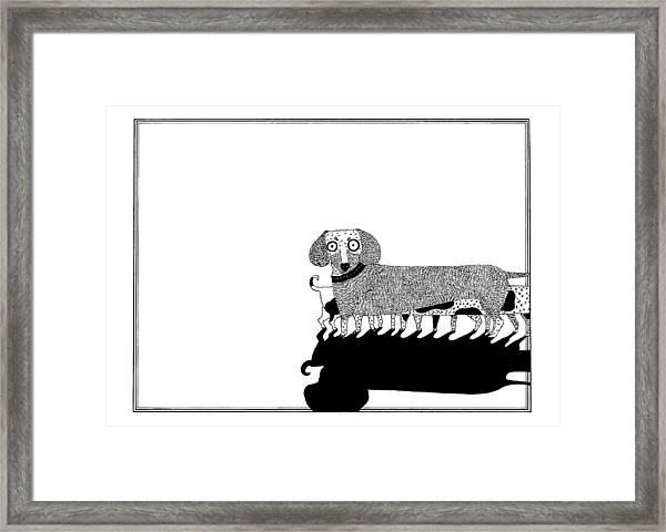 Puppies Framed Print by Anastassia Neislotova