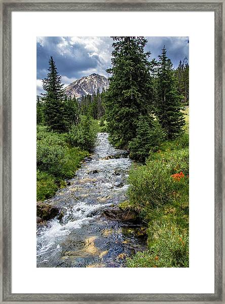 Pure Rocky Mtn. Spring Water Framed Print