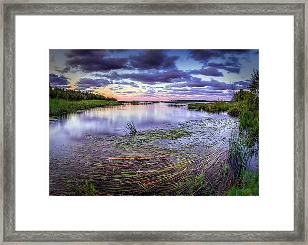 Purple Bay Framed Print
