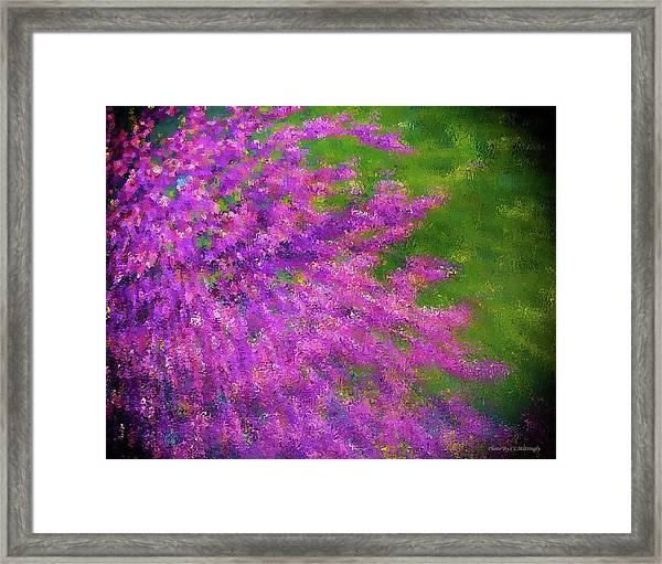 Purple Bush Framed Print