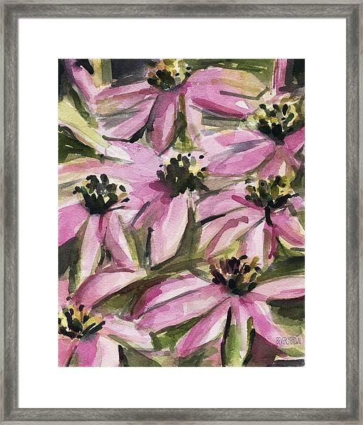 Purple Coneflowers Framed Print