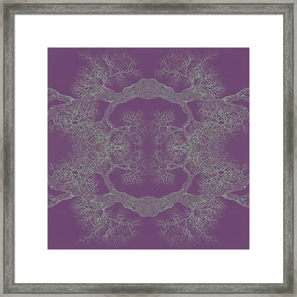 Purple Desire Tree 8 Hybrid 1 Framed Print