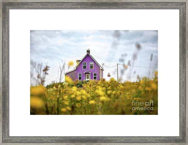 Purple House And Yellow Flowers Framed Print