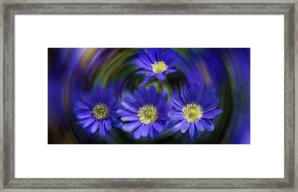 Purple In Nature Framed Print