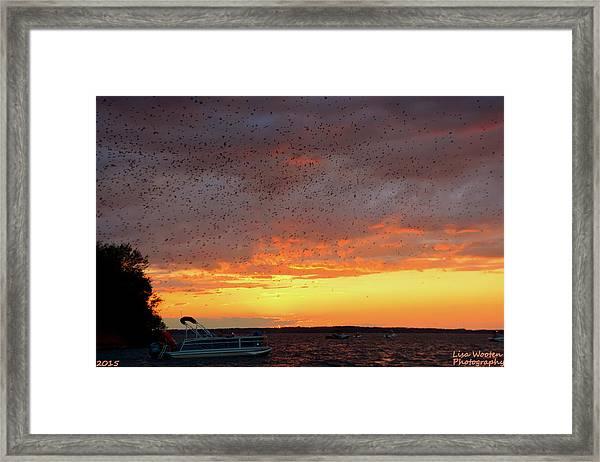 Purple Martin Sunset On Lake Murray Sc Framed Print