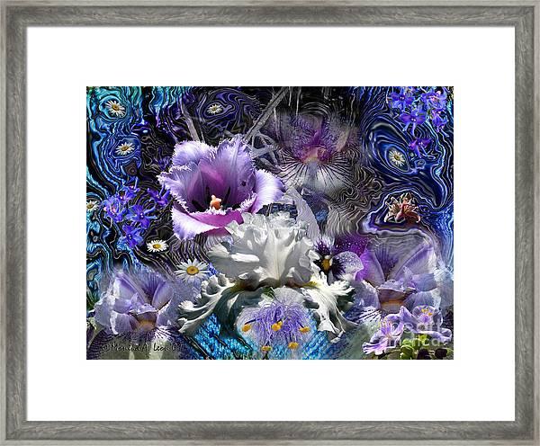 Purple Framed Print