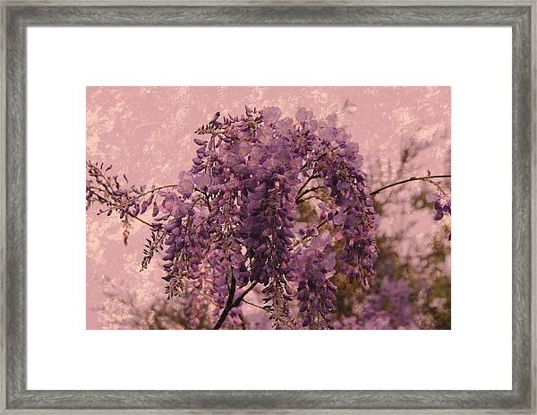Purple Pleasures Framed Print