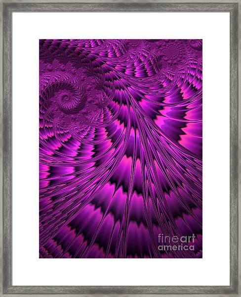 Purple Shell Framed Print