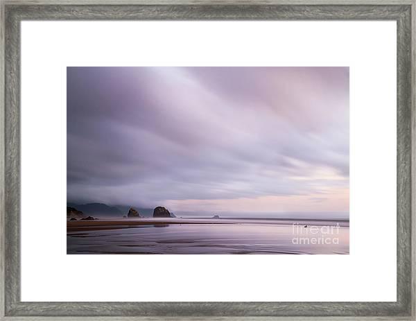 Purple Wisp In The Morning Framed Print