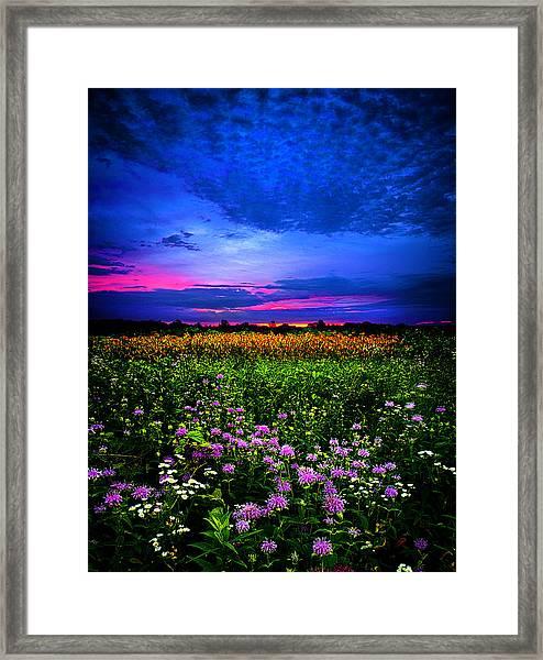 Purples Framed Print
