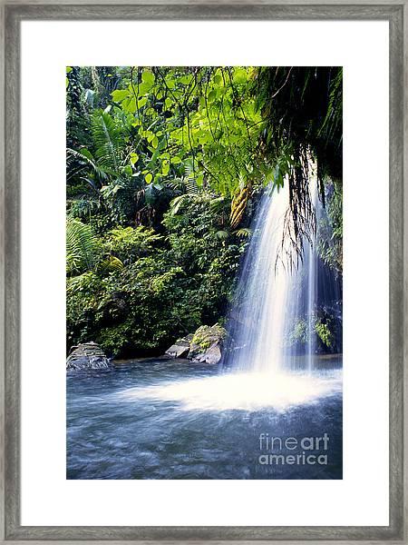 Quebrada Juan Diego Waterfall Framed Print