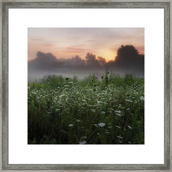 Queen Ann Sunrise Square Framed Print